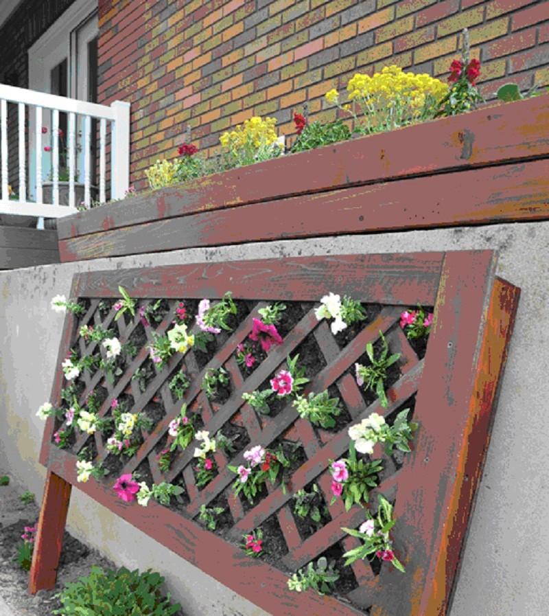 цветы на вертикальной деревянной решетке
