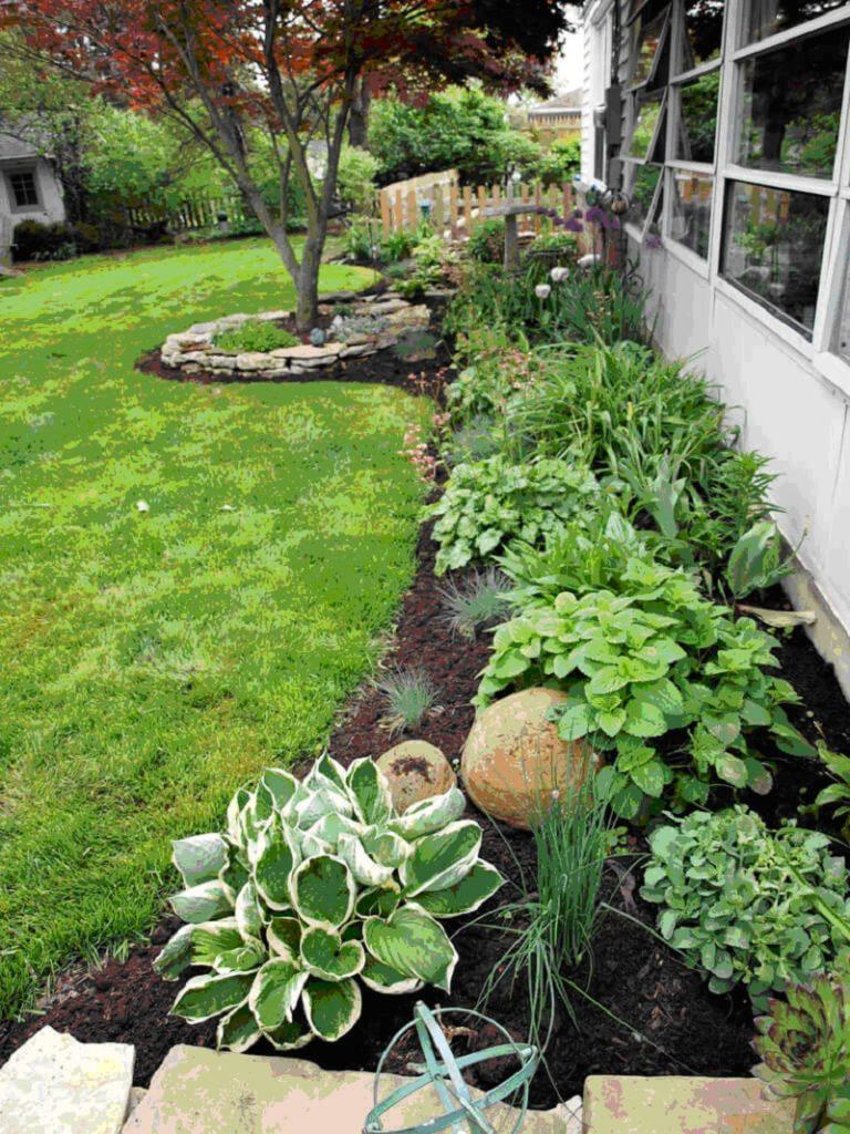 вариант сочетания огородных культур с декоративными