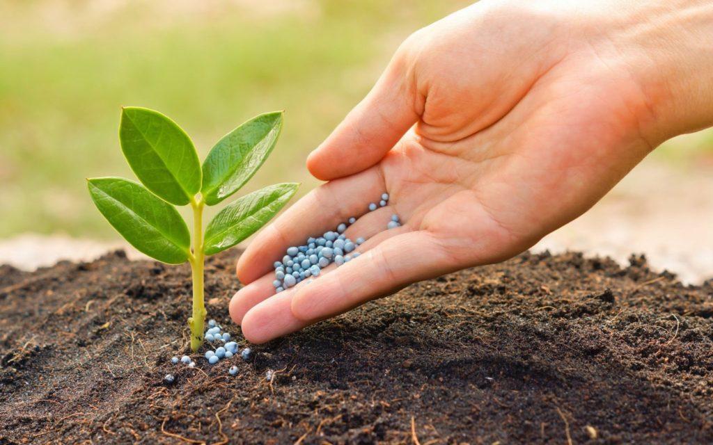 определение состава почвы на участке 15 соток