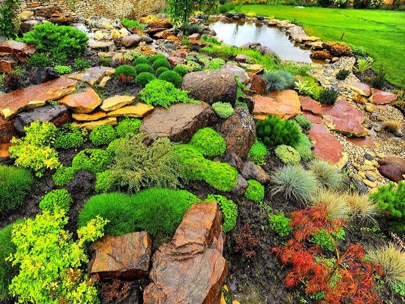 пример сочетания каменного сада с водоемом