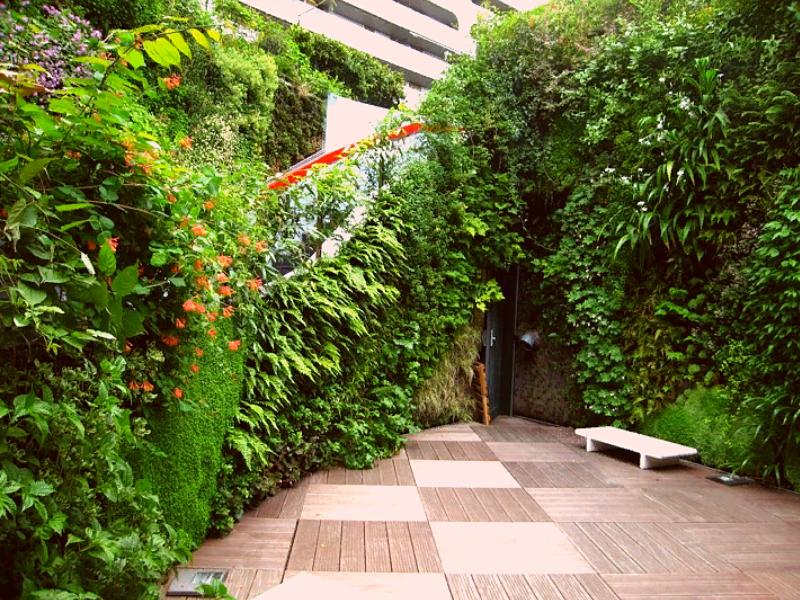 зеленые стены в ландшафте