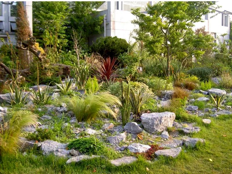 каменный сад в английском  стиле
