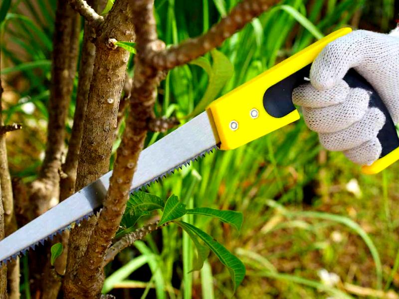 Простая ножовка по дереву
